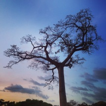 Sunset, Volta Region 2015